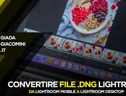 Come convertire file DNG Preset Lightroom Mobile per Lightroom Desktop