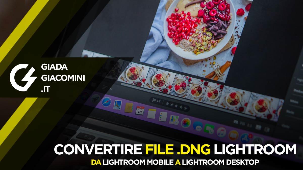 Come convertire Preset DNG Lightroom Mobile per Lightroom Desktop